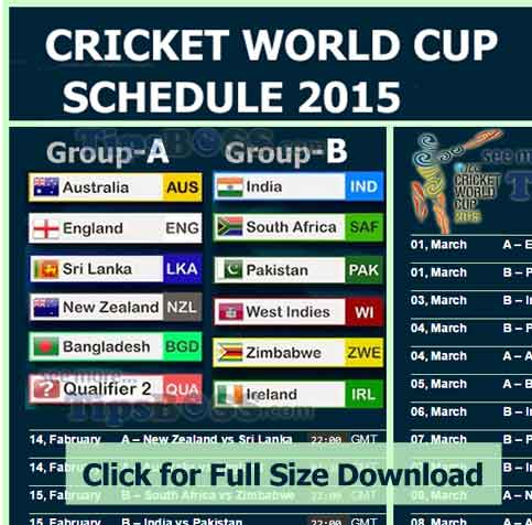 Cricket World Cup 2015 Pdf