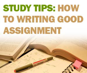 Academic writing assignment